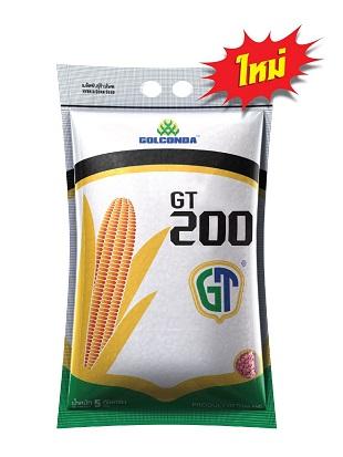 GT-Online_200310