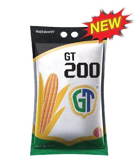 GT200ENG