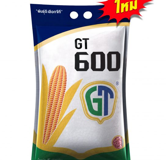 gt600-01